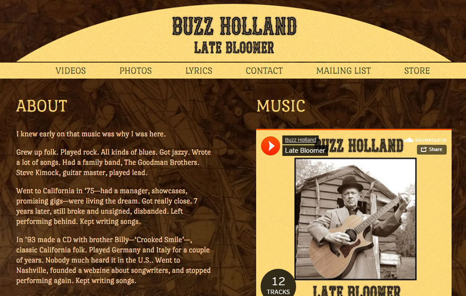 Buzz Holland Band websites