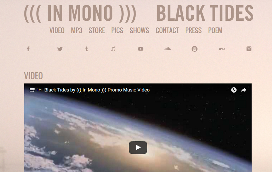 In Mono Musician Website
